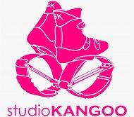 Studio Kangoo